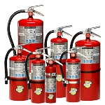 2.5 lb Buckeye ABC Dry Chemical Fire Extinguisher