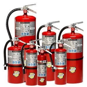 10 lb Buckeye ABC Dry Chemical Fire Extinguisher